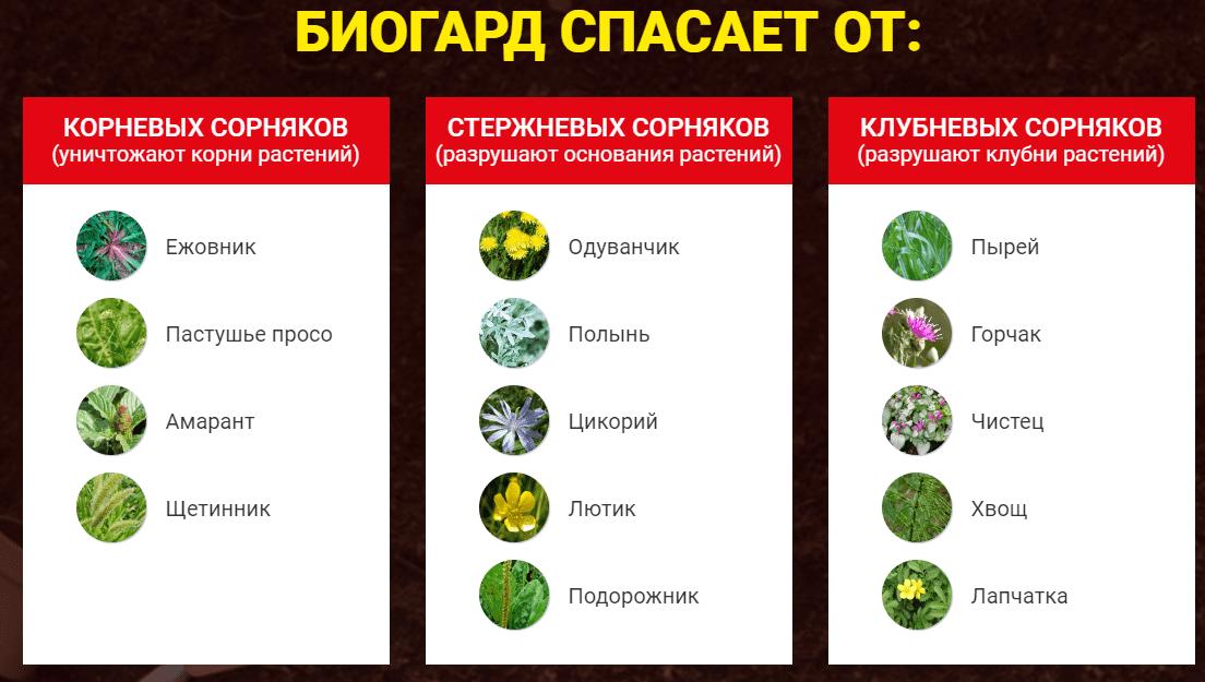 биогард спасет о различных видов сорняков